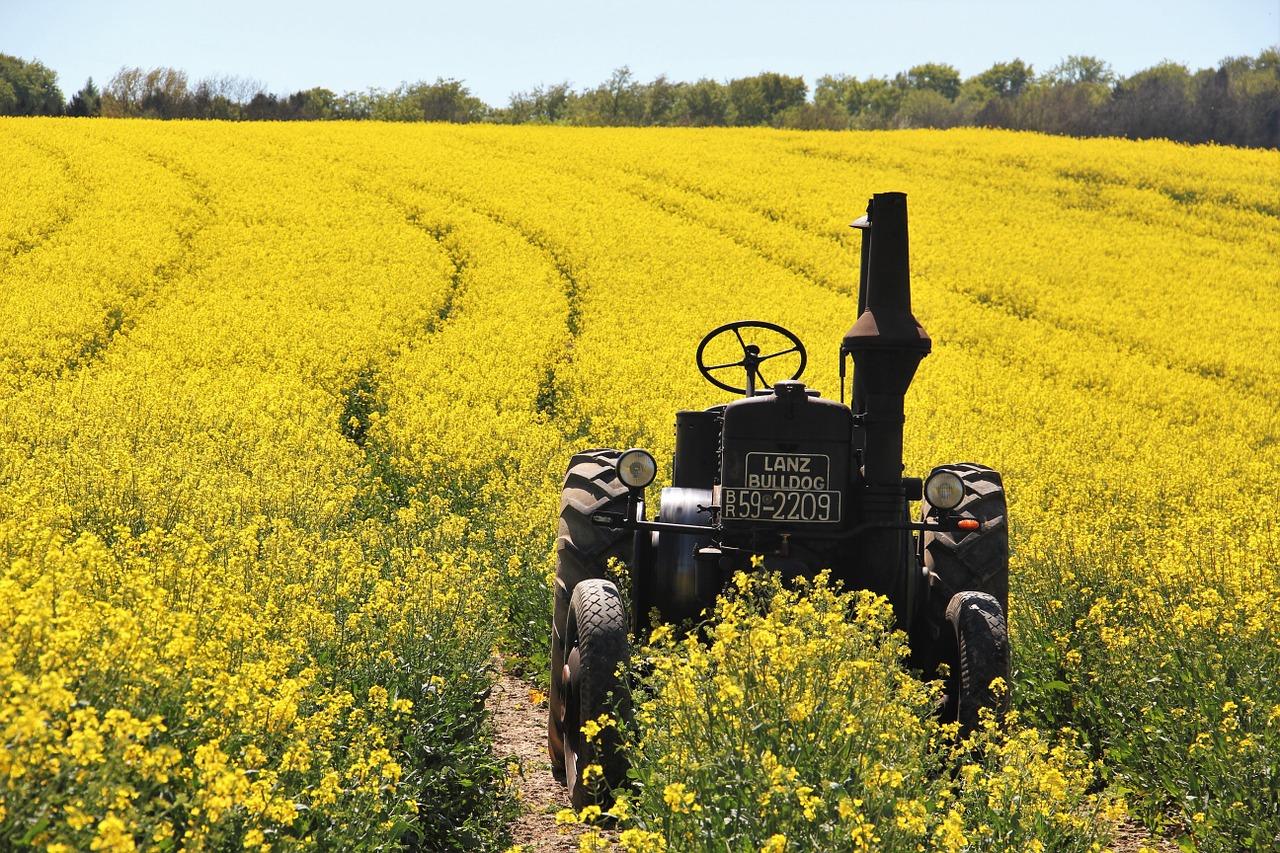 Traktor- und Oldtimerclub