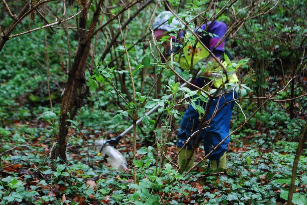 Fleissige SammlerInnen beim Frühjahrsputz